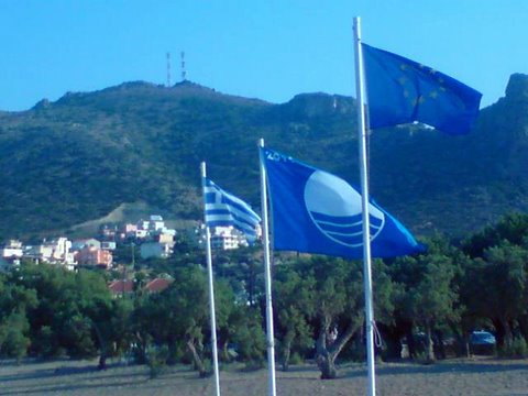 blaue-flaggen