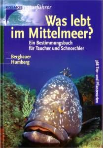 buch-was-lebt-im-mittelmeer