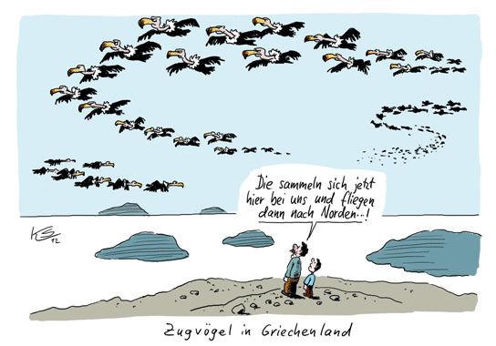 ks-zugvogel-in-griechenland