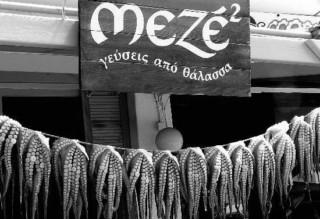 Aus dem Kochstudio: Oktopus in Weinsauce