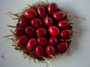Griechische Ostertraditionen: rote Ostereier