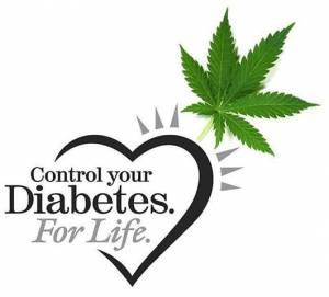 cannabis-diabetes