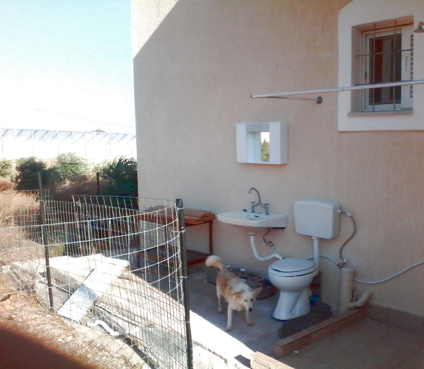 Toilette aussen