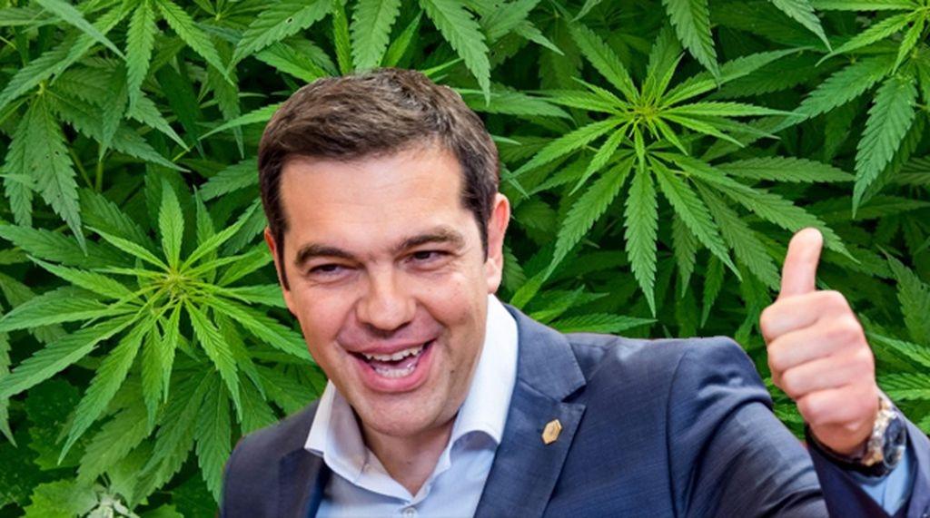 Cannabis Tsipras