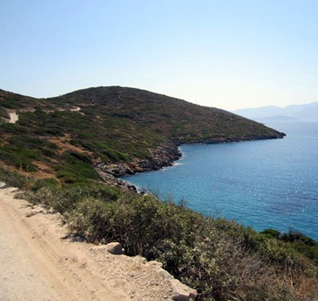 Road Kolokytha