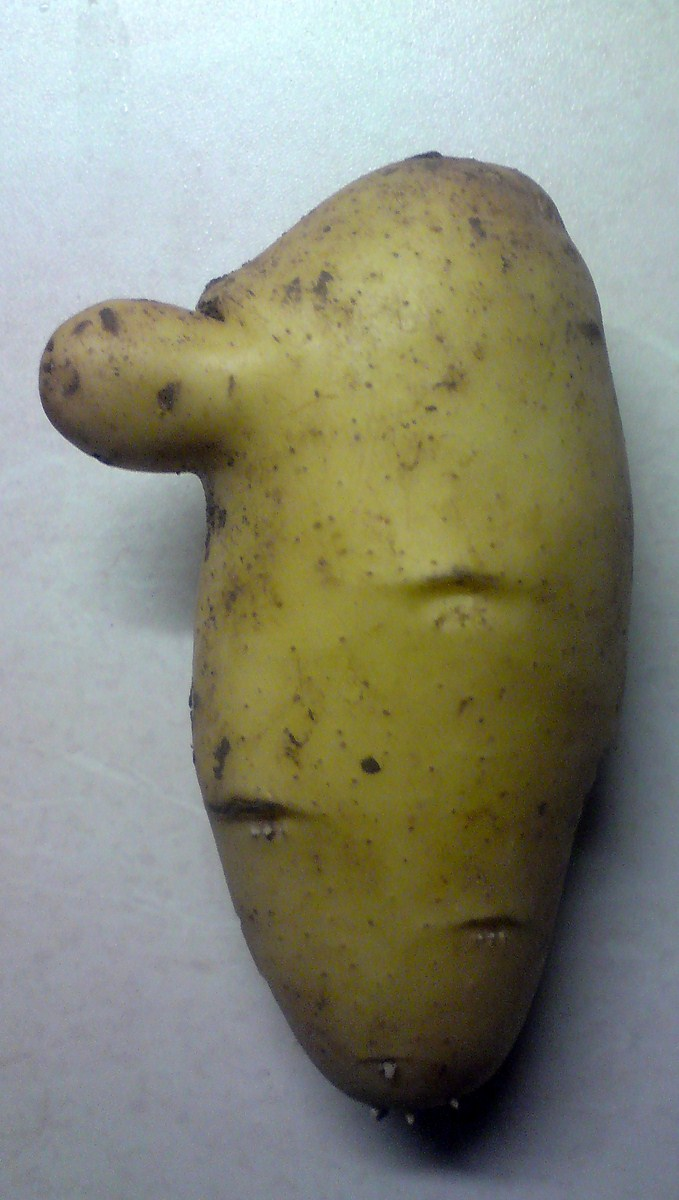 kartoffel-mit-nase_0