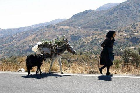 Esel und Oma