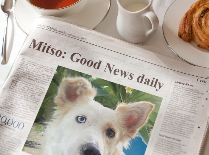 good-news-mitso