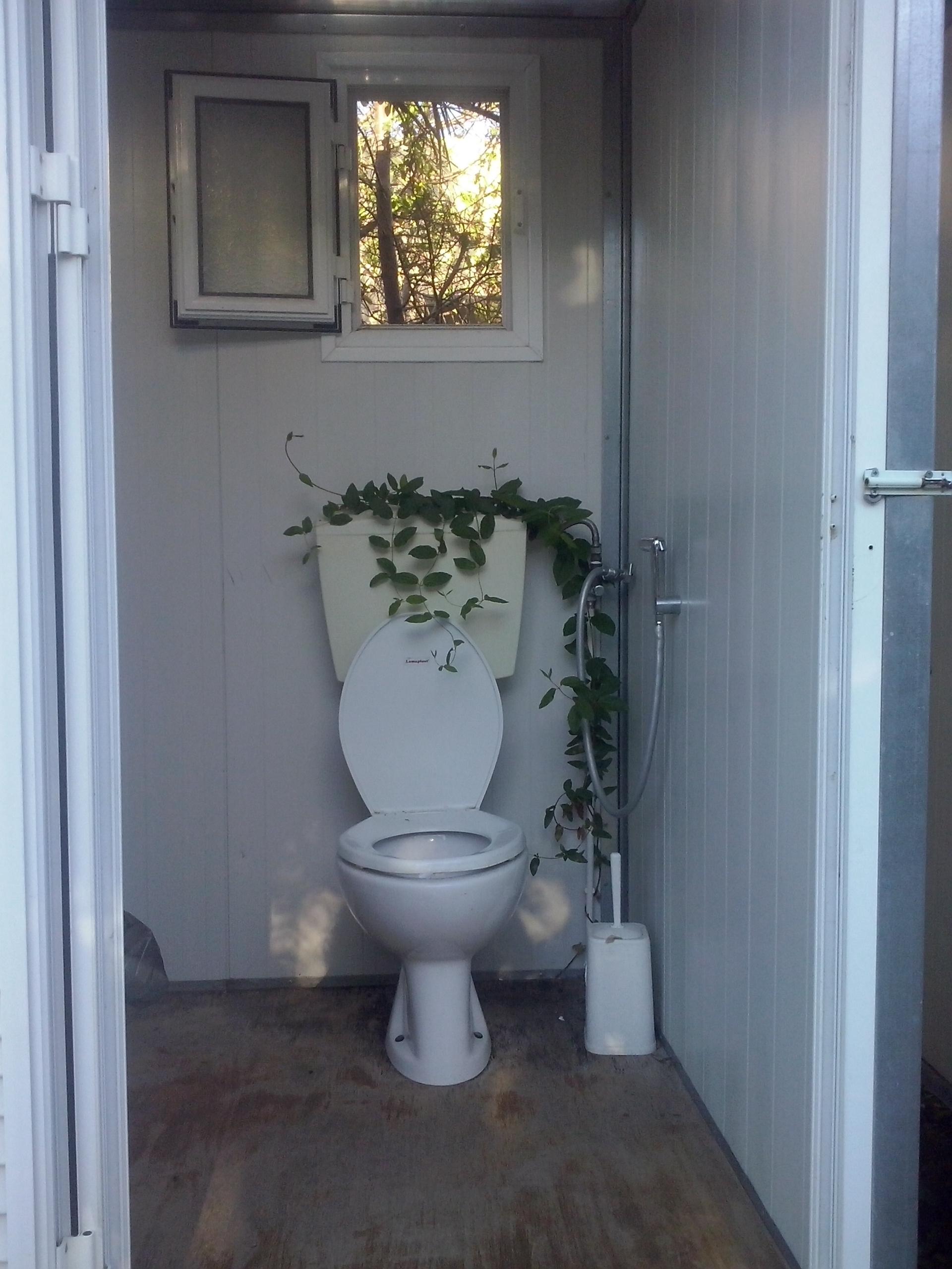 gruene Toilette Grammeno Camping