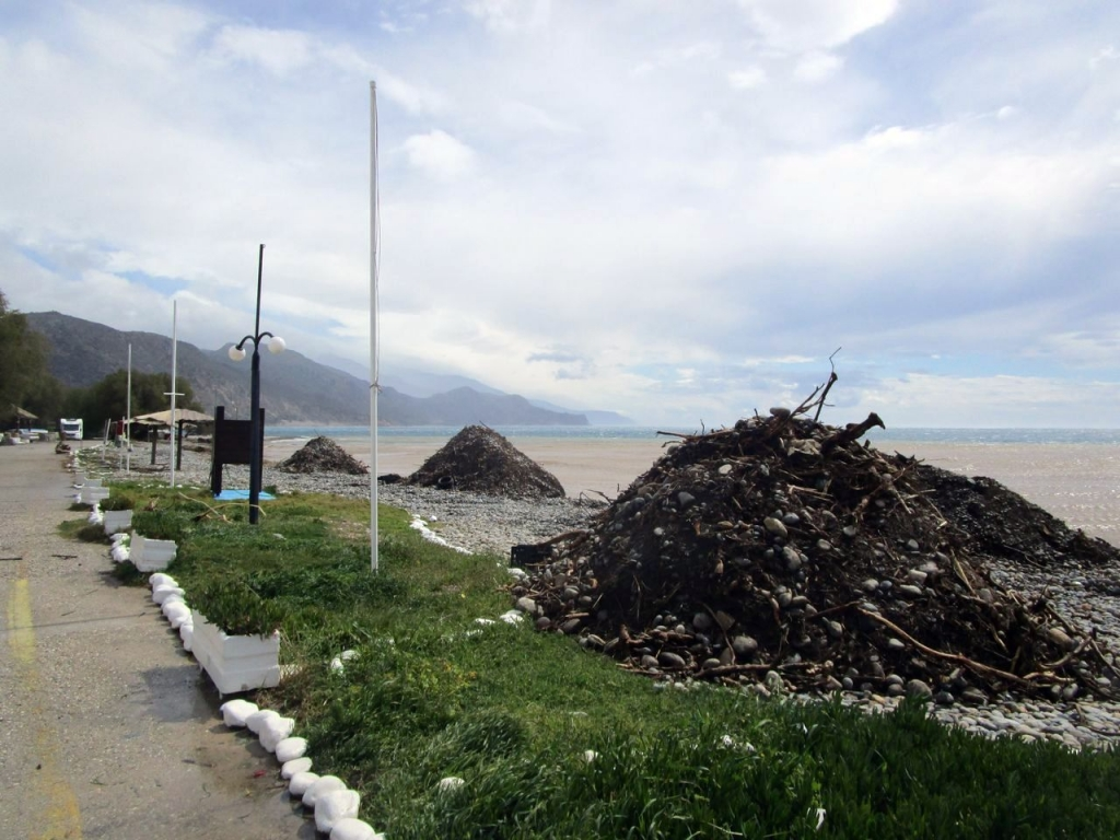 Muell Stony Beach