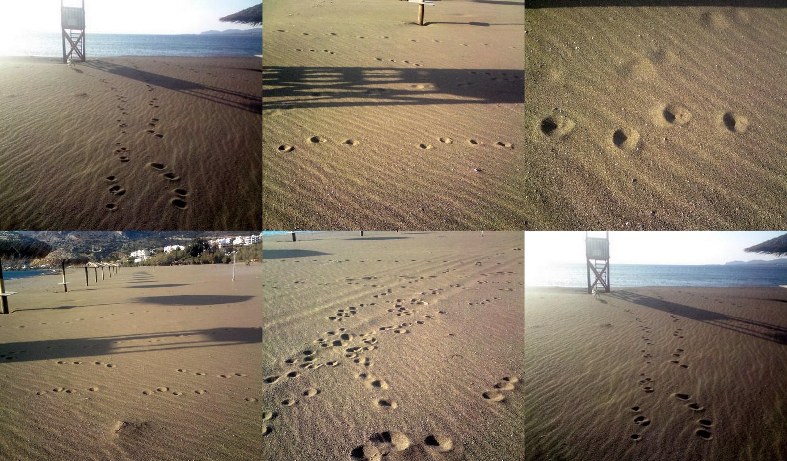 mitsospuren-am-strand-collage