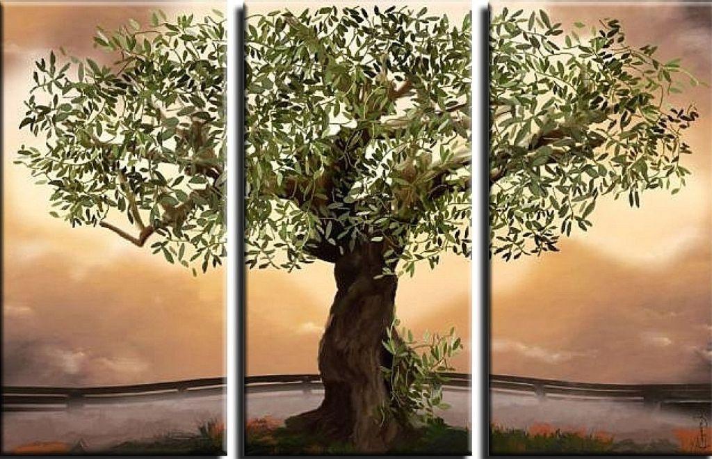 Olivenbaum1