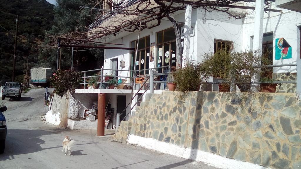 Sarakina Mitso geht ins Kafenion
