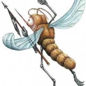 wie lange jucken mückenstiche