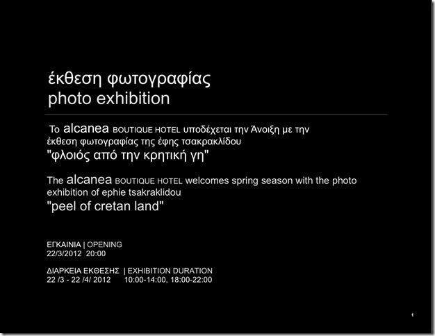 alcanea-fotoausstellung-mrz-apr-2012